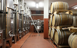 Wine Cellar Cooperatives