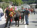 La Désarpa (cows parade)