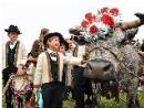 Devétéya é Féra de Cogne - Défilé des troupeaux, foire et marché