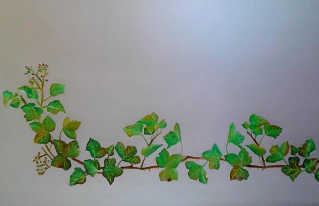 Painting exhibition of Greta Ferri thumbnail