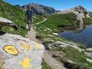 Il trek dei Giganti: da Gressoney a Courmayeur