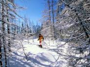 Dans le Parc National du Grand Paradis en raquettes à neige