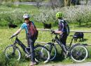 Passeggiate in e-bike