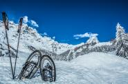Snow Sport Experience