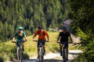 Sulla strada del vino in  mountain Bike