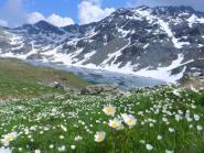 Alta montagna tra parchi e relax
