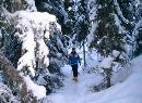 """Einen kleinen Spaziergang auf dem Schnee - """"Lou Tchappé di Lillaz"""" - der Zauberwald"""