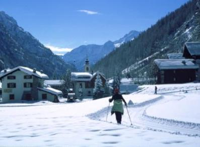 Cross-country runs in Gressoney-La-Trinité