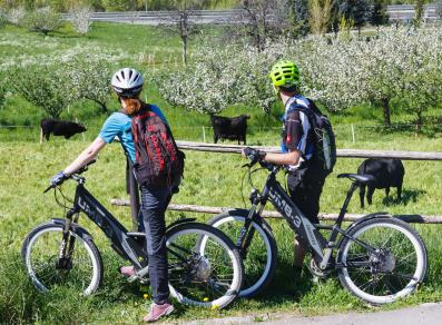 e-bike in the Aosta Valley
