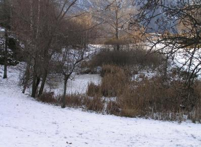 Stagno di Holey Nature Reserve - Pont-St-Martin