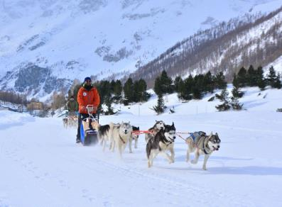 The Husky Experience Breuil Cervinia